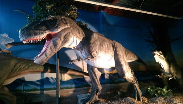 dinosaur_1