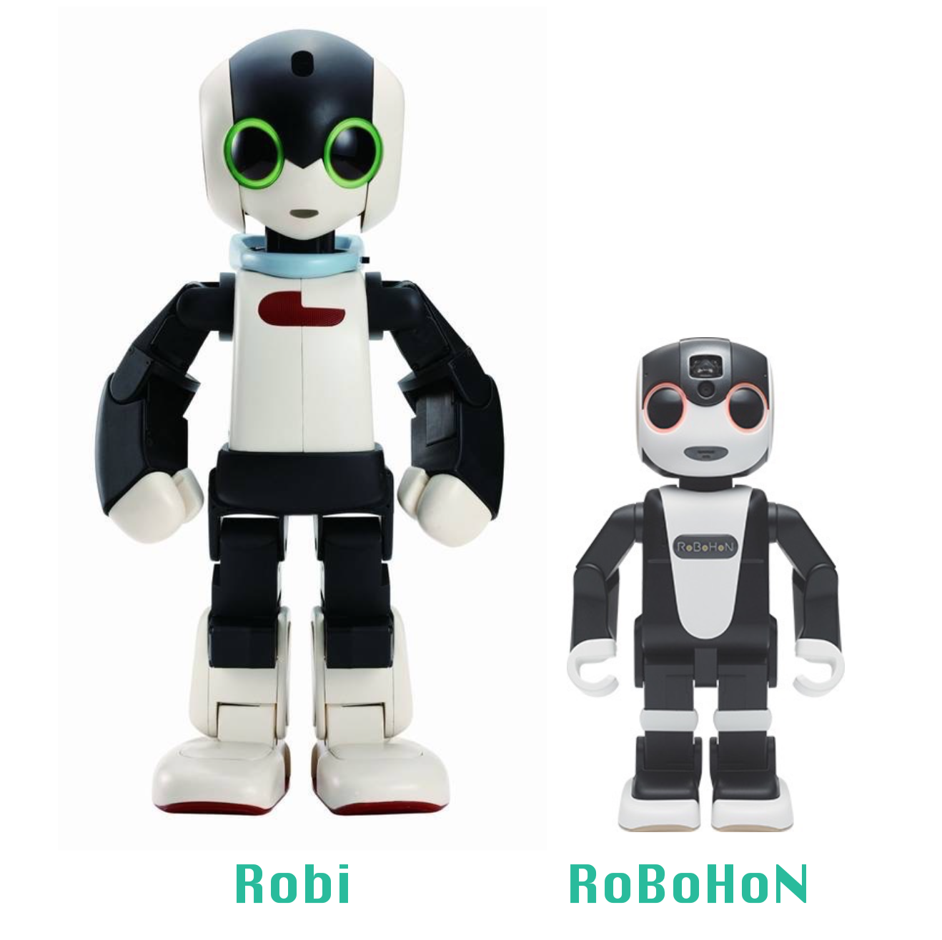 robohon01