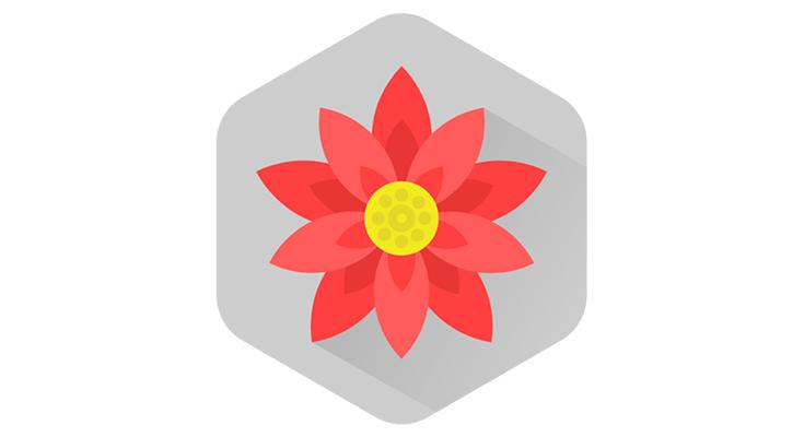 160126_flower001