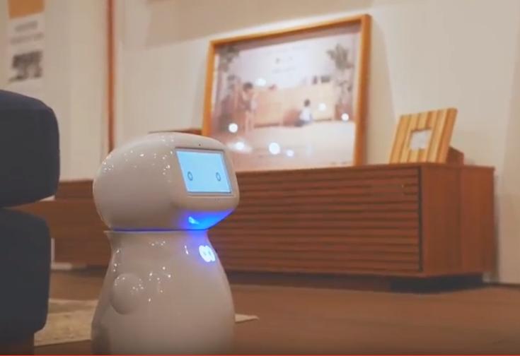 ホームロボット「シナモン」の写真