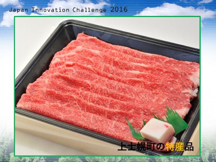 Japan Innovation Challenge 025