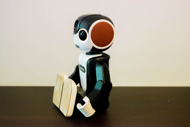 robohon_accessory-2-11