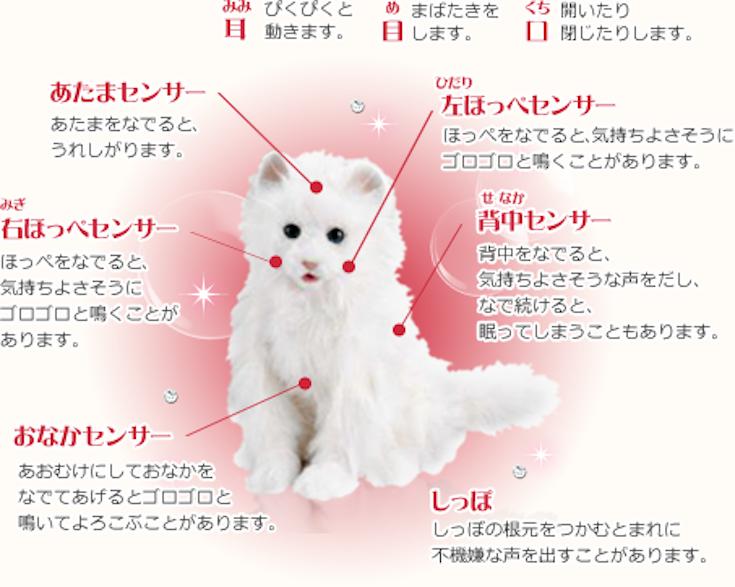 yumeneko02