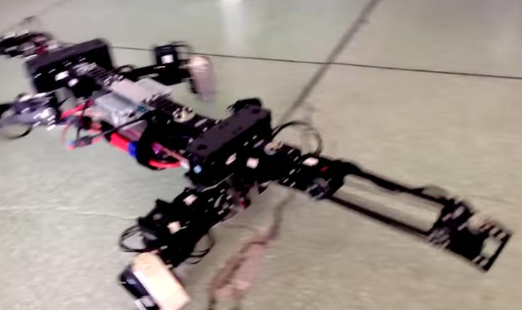 BioRob03
