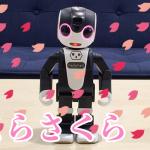 【ロボホンアプリレビュー】ロボットがしっとり歌いあげる〜桜