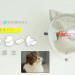 NTTドコモの猫型ドローン「にゃろーん」動画を公開 猫心をつかんで離さない技術と魅力を解説 #猫の日