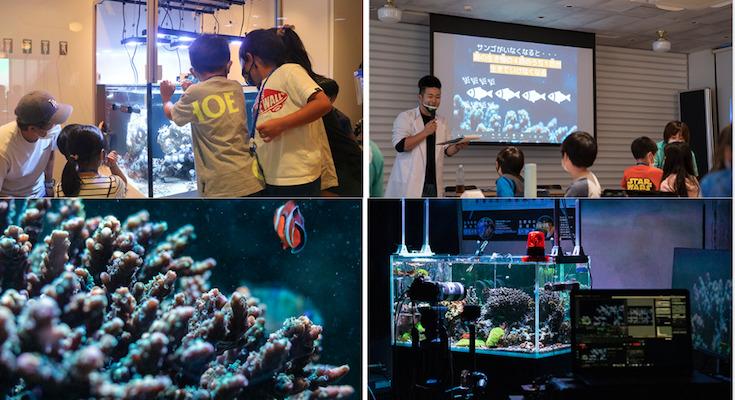 今日は(3月5日)珊瑚の日、サンゴ礁生態系がもたらす恵みと抱える課題 ...