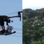 茨城県つくば市内の雑木林に大量繁殖した白鷺をドローンで追い払う 実証実験をJOGAが実施