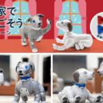 「aibo」購入者にオリジナル蝶ネクタイ2色セットをプレゼント『aiboとお家で過ごそうキャンペーン 』ソニーストアで実施